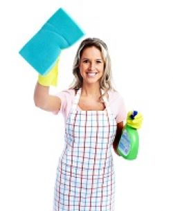 Greenwich Domestic Cleaners SE10